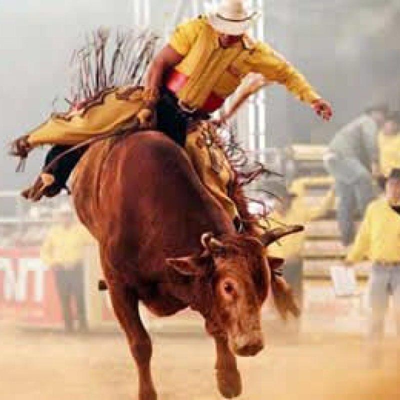 Elite do rodeio brasileiro estará na 38ªExpojipa