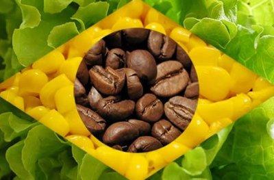 Agricultura brasileira – Ajuste fino