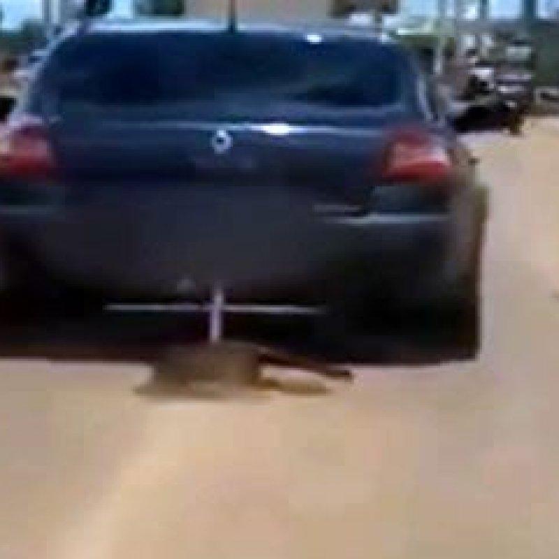 Cachorro amarrado em reboque é arrastado por carro em rua no DF; imagens fortes