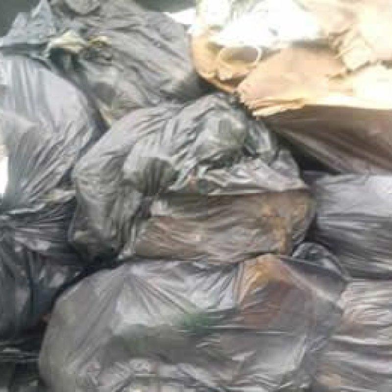 Falta de coleta de lixo expõe população de Ouro Preto do Oeste à sujeira e a riscos