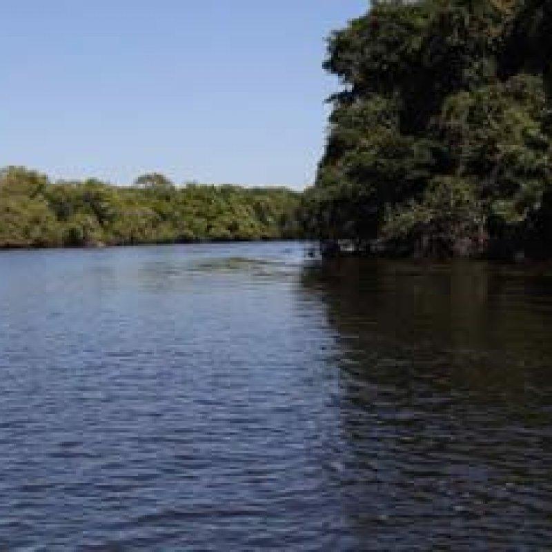 Rondônia firma contrato com ANA para monitorar qualidade da água no estado