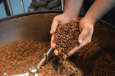 Rondônia registra crescimento na produção de café em 2017