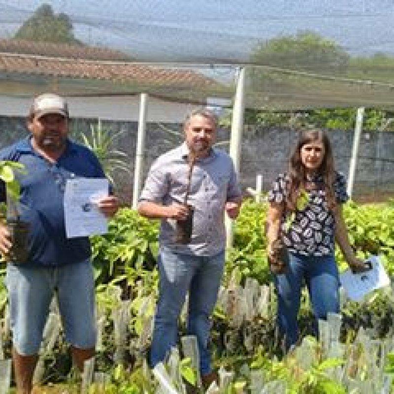 Prefeitura entrega mais de 25 mil mudas de cacau a produtores rurais de Ouro Preto