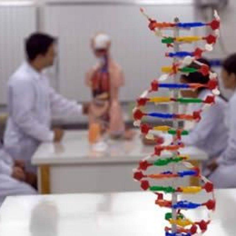 Ministério da Educação confirma curso de medicina para Ji-Paraná