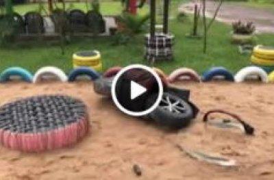 Vândalos destroem parque ecológico de escola em OPO