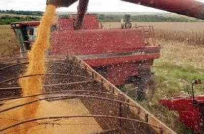 Conab: safra de grãos deve cair 3,9%, mas será a 2ª maior da história