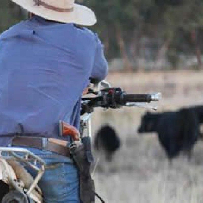 Comissão da Câmara aprova projeto que permite porte de arma na área rural