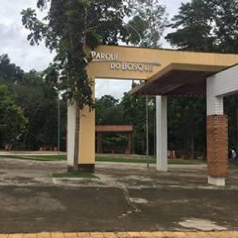 Ouro Preto: cães na área do Bosque Municipal causam transtornos e gera reclamações