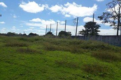 Teixeirópolis: estádio que já consumiu R$ 400 mil continua servindo de pasto para animais