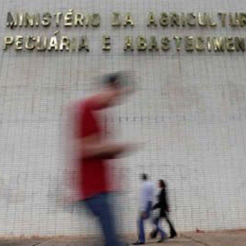 Ministério da Agricultura divulga edital de seleção para 300 vagas