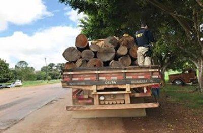 PRF apreende caminhão com madeira irregular em Jaru