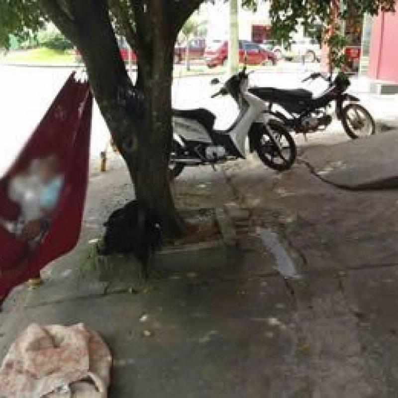 Presença de pedintes incomoda comerciantes e pedestres em Ouro Preto
