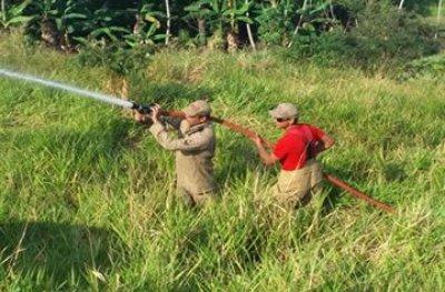 Incêndio em morro mobiliza Corpo de Bombeiros em Ouro Preto do Oeste