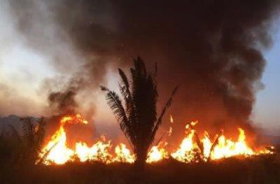 Rondônia registra quase 8 mil focos no ano e é o 2º estado que mais queima no país, aponta Inpe