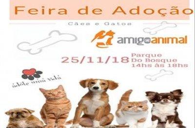 ONG promove feira de adoção de cães e gatos em Ouro Preto do Oeste