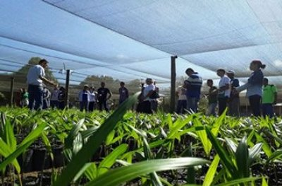 Ouro Preto: encontro de associações vai definir execução de projeto para recuperação de áreas degradadas