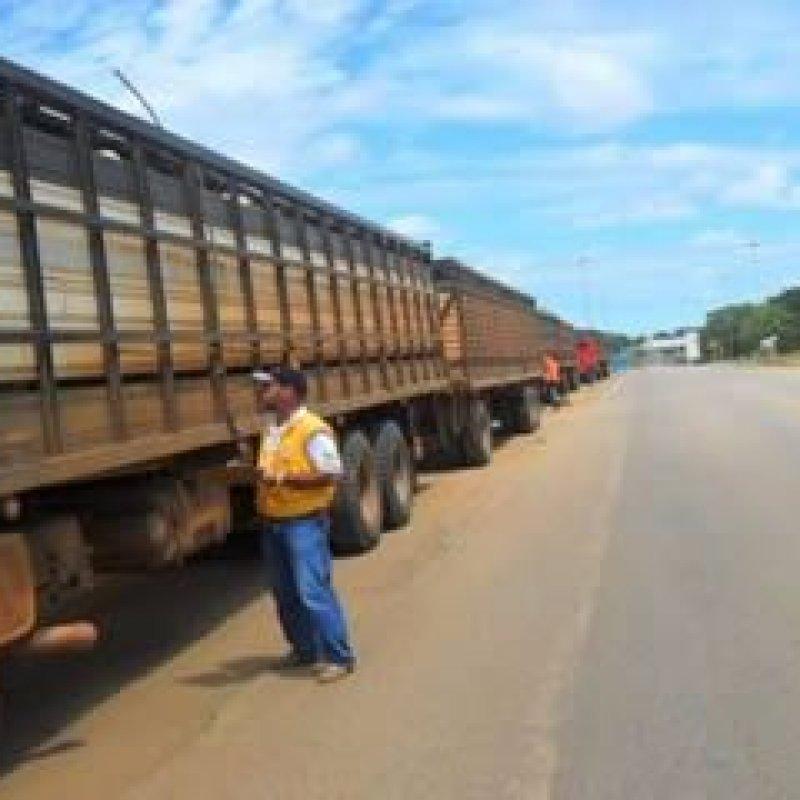 Ouro Preto: Idaron realiza fiscalização de transporte de animais e vegetais
