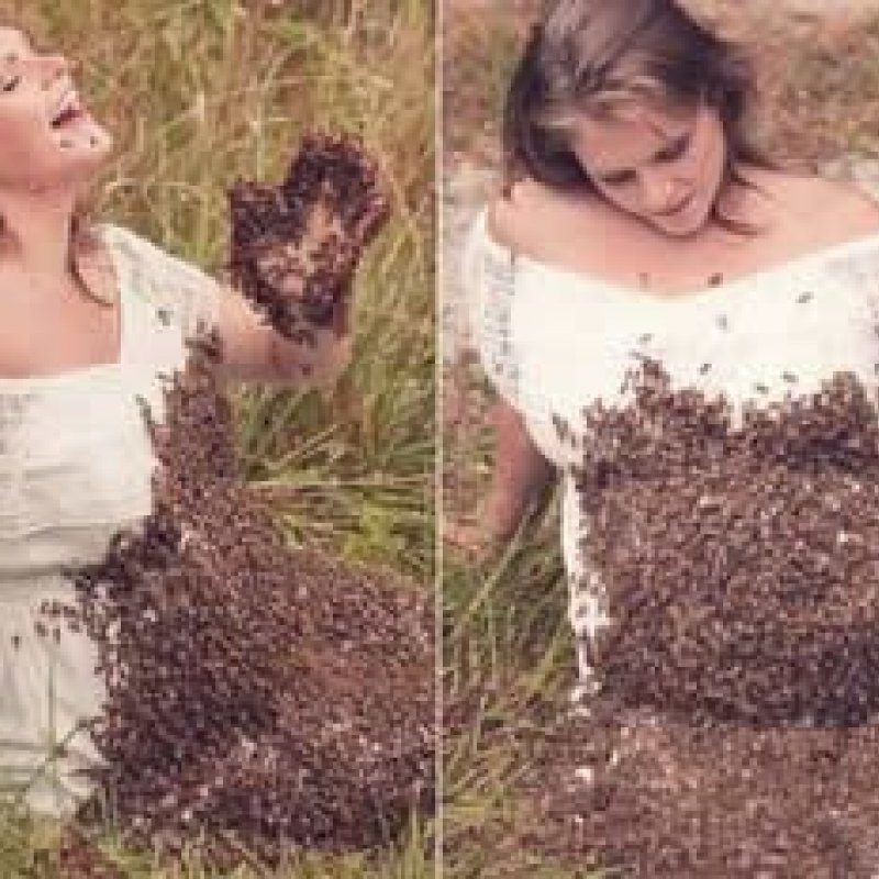Grávida que fez ensaio com 20 mil abelhas na barriga perde o bebê