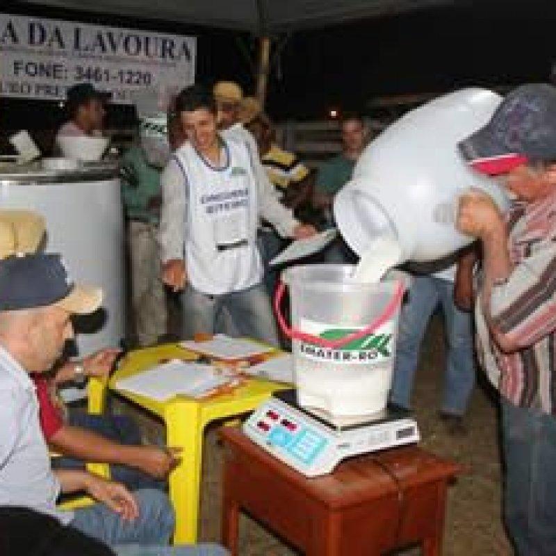 Concurso leiteiro da Agri-Show Norte terá 30 animais na disputa em duas categorias