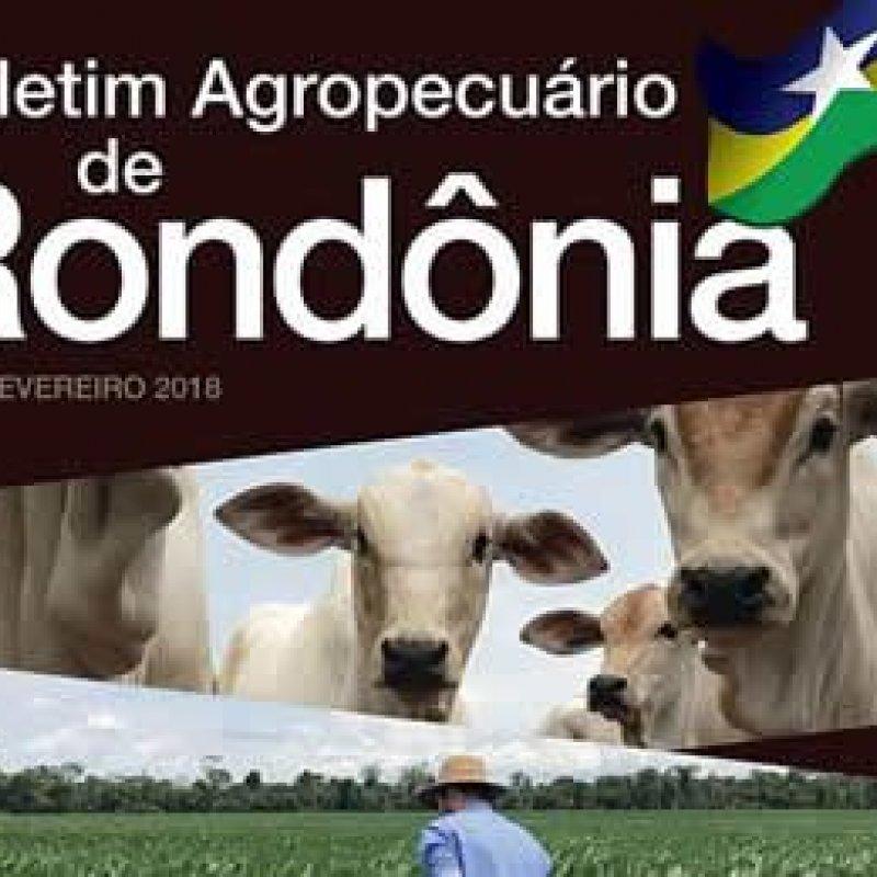 Embrapa lança boletim periódico com dados agropecuários de Rondônia