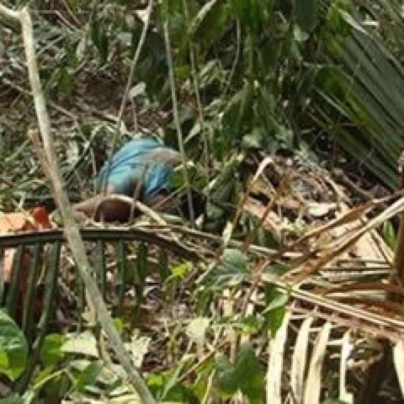 Idoso morre durante derrubada na zona rural de Monte Negro