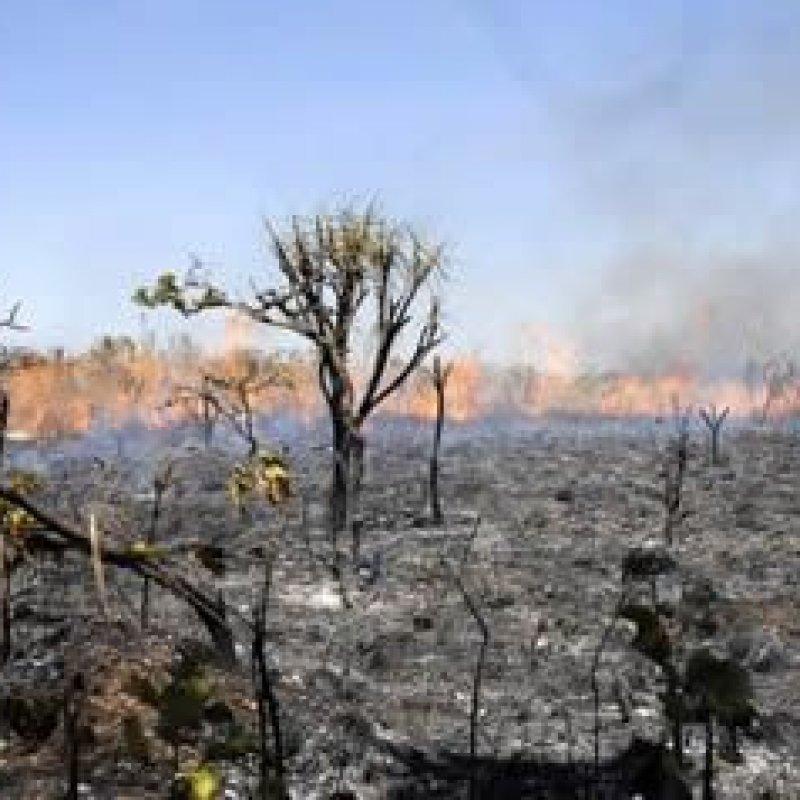 Nasa divulga boletim que prevê temporada de seca intensa