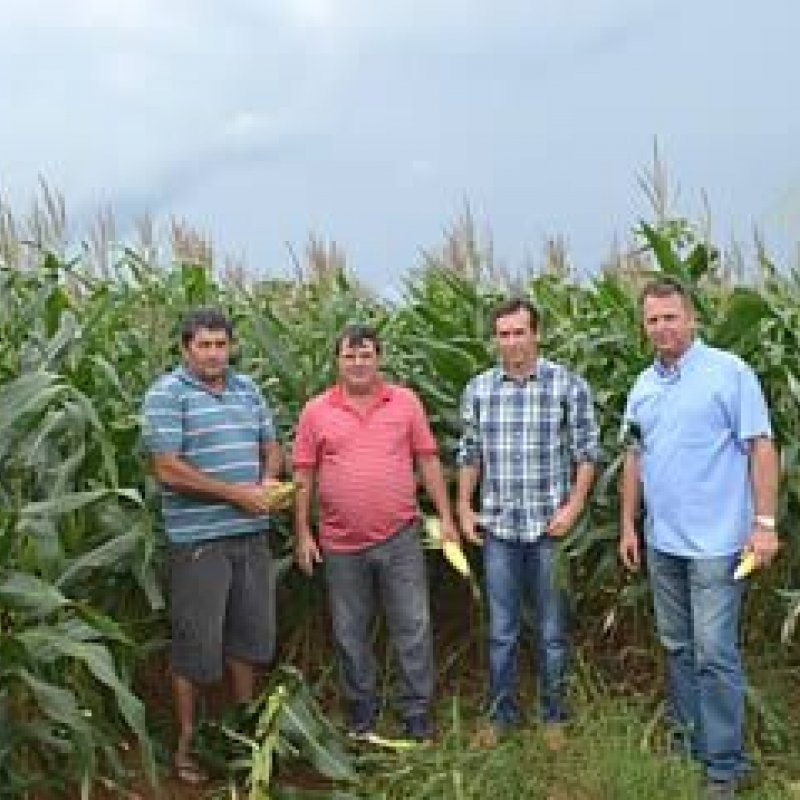 Implementos entregues por Marcelino Tenório geram economia a produtores