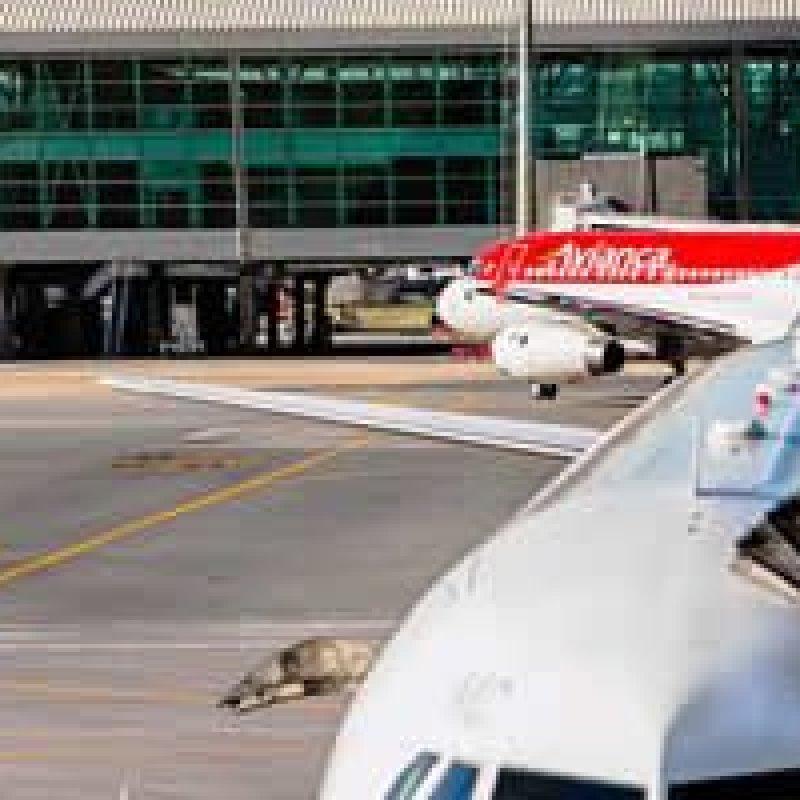 Mais de 270 voos já foram cancelados no país, diz associação
