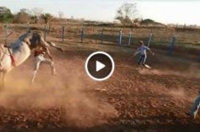 Peão de 19 anos morre após levar coice de touro na cabeça